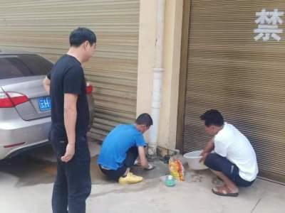 丘北县政务服务管理局深入网格区开展志愿服务活动