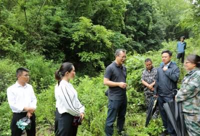 李黎调研地质灾害防治和河长制工作