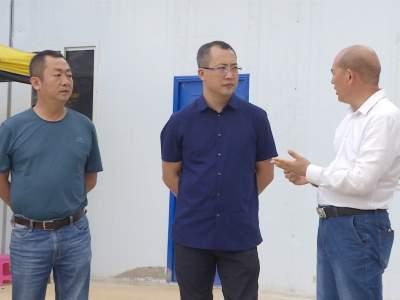 李黎调研全县肉牛产业发展情况
