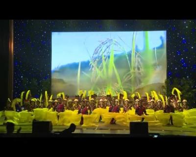 红河县举行2019年哈尼十月年暨长街宴迎宾文艺晚会