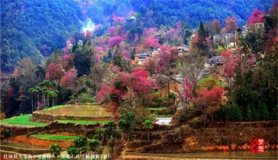 恭喜!红河县又上榜了!云南拟认定150个旅游扶贫示范县、乡、村!