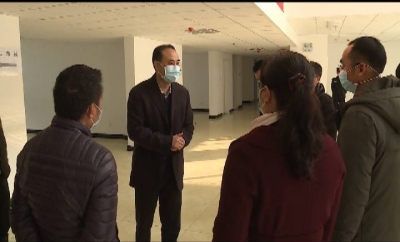张智俊检查指导县城疫情防控及重点项目开工建设工作