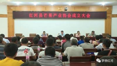 红河县芒果产业协会成立
