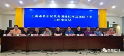 """上海市长宁区代表团到红河县对接""""东西协作""""医疗支援工作"""