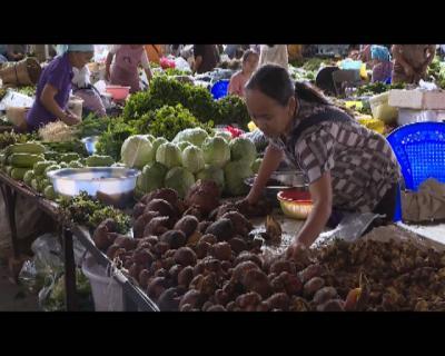 野生菌陆续上市  群众需掌握  正确的食用方式
