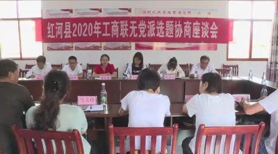 红河县开展2020年党外代表人士调研协商活动