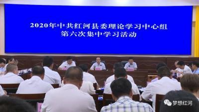 县委理论学习中心组举行2020年第六次集中学习