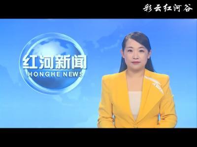 红河县举办第七次全国人口普查抽调人员业务培训会