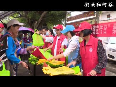 红河县开展新时代文明实践公民道德宣传日暨科普科技志愿服务活动