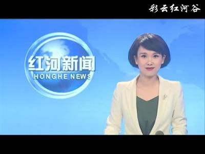 红河县:修剪绿化树保安全