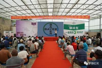 红河县2020年拜耳·王艳农资第三届技术交流会举行