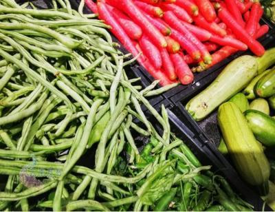 【爱国卫生七个专项行动】事关你我!云南省发布我国首项绿色餐饮建设和运营领域地方标准