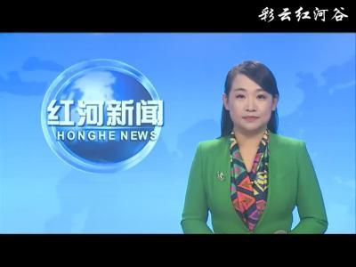 红河县举行2020年老年节老干部座谈会