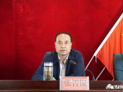 张智俊到洛恩乡宣讲党的十九届五中全会精神