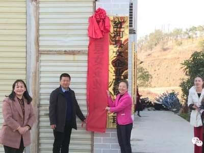 红河县女企业家协会揭牌成立