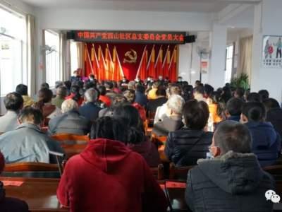 红河县村(社区)党组织换届选举圆满完成