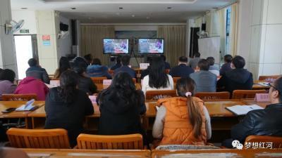 """红河县组织参加省、州爱国卫生""""7个专项行动""""暨农村人居环境整治督办推进会议"""