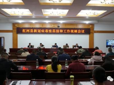 红河县召开新冠病毒疫苗接种工作视频会