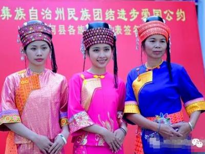 """""""寻根""""红河县 走进世居民族——傣族"""