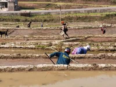 春耕春播的季节,红河县天气会有什么变化?