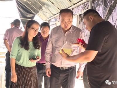 张智俊专题调研红河县种养殖产业发展情况