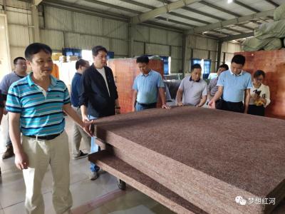 中国热带农业科学院椰子研究所赴红河县调研棕榈产业发展