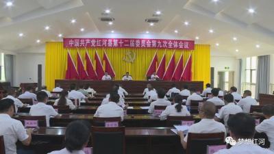 中国共产党红河县第十二届委员会第九次全体会议召开