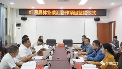 红河县林业碳汇合作项目签约仪式