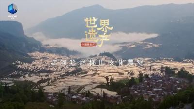 今晚19:55央视《中国微名片·世界遗产》第一季带你了解红河哈尼梯田