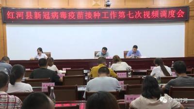 红河县召开第七次新冠病毒疫苗接种工作视频调度会议