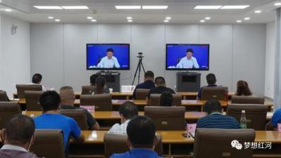 红河县组织参加全省新冠肺炎疫情防控工作视频调度会议