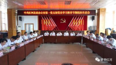 陈勇宏参加县委办第一支部党史学习教育专题组织生活会