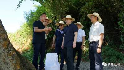 上海市长宁区党政代表团到红河县调研
