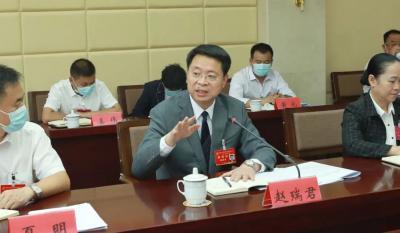 聚焦党代会 | 赵瑞君、罗萍、王刚参加各代表团讨论