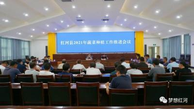 红河县召开2021年蔬菜种植工作推进会