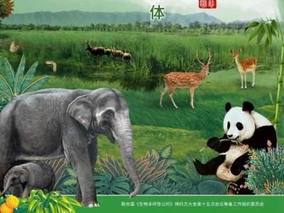 COP15 先睹为快!COP15系列主题歌曲《地球妈妈》动画MV版来啦