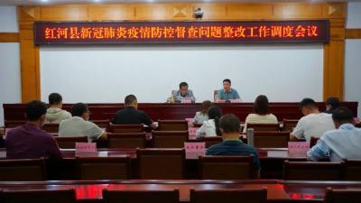 红河县召开新冠肺炎疫情防控督查问题整改工作视频调度会议