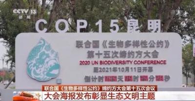 COP15即将召开!大会各项筹备工作进入最后关头