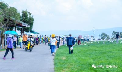 黄金周红河旅游大数据出炉!最受欢迎的景区是......你去了吗?
