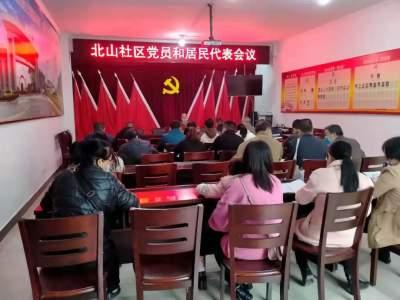 河口镇各村(社区)召开党员和村(居)民代表会议