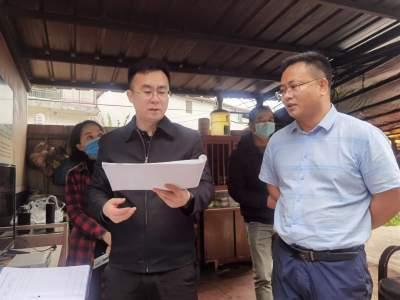 王孝刚率调研组到桥头乡、南溪镇开展综合调研