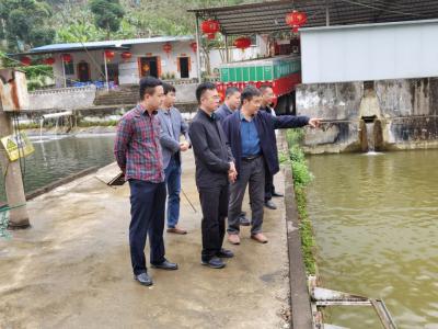 县委副书记王孝刚率队到南溪农场开展综合调研
