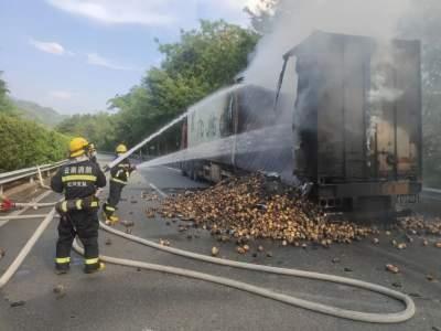 防灾减灾|一货车突然起火 河口县消防救援大队紧急救援