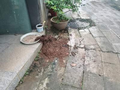 爱卫专项行动曝光:废弃泥土乱堆放