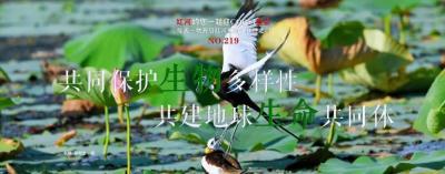 生物多样性  【NO.220】红河约您一起迎COP15盛会 每天一物开启红河生物多样性之门