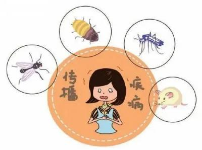 爱卫专项行动 关于病媒生物防制,这些知识你需要了解