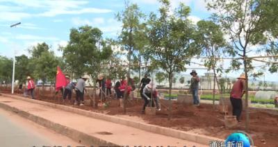 巾帼志愿者助力美丽乡村建设