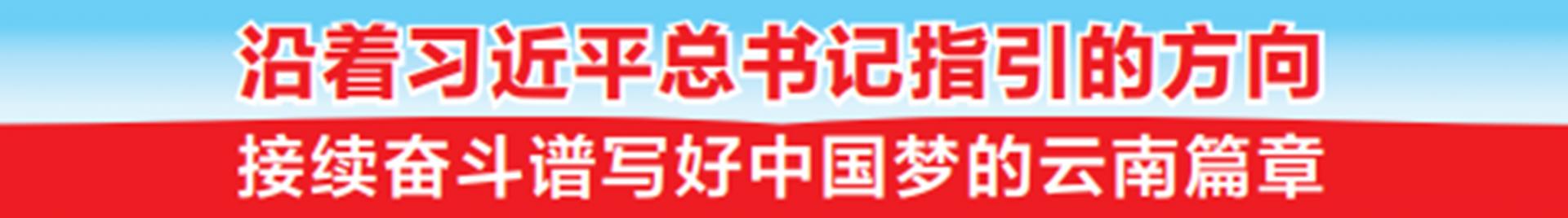"""从一家一户""""小作坊""""成长为30亿元的强县富民产业——石屏豆腐的创新发展之路"""