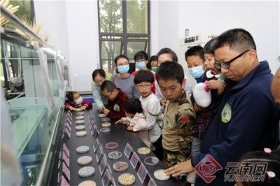 云南农业种质资源保护利用成效明显
