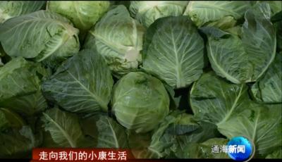 走向我们的小康生活 我县冬早蔬菜质优价好  助农增收
